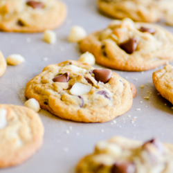 If you love Pepperidge Farm Sausalito cookies, you are going to love this copycat recipe! Cookies that have crispy edges and chewy middles filled with creamy milk chocolate and macadamia nuts.