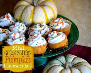 Mini Gingersnap Pumpkin Cheesecakes Recipe