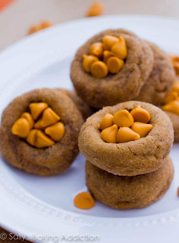 Soft Gingersnaps With Butterscotch Chips By Sallys Baking Addiction Cookies 3