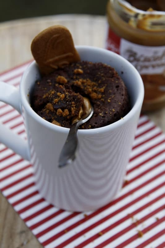 Churros-Biscoff-Mug-Cake-073-533x800