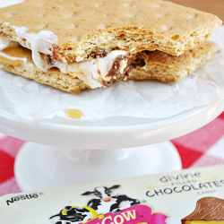 Milk Chocolate and Caramel Skinny S'mores | www.somethingswanky.com