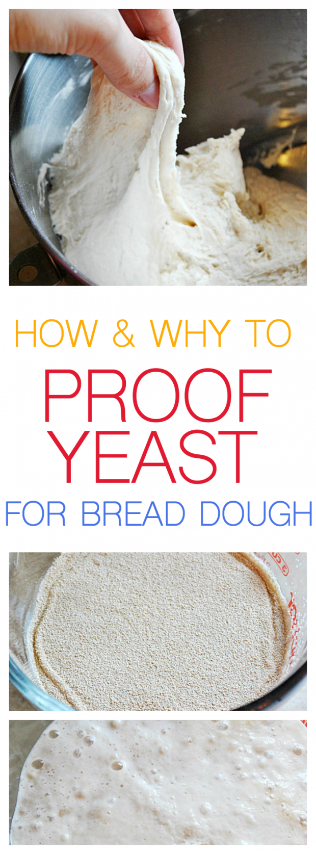 How & why to proof your yeast!