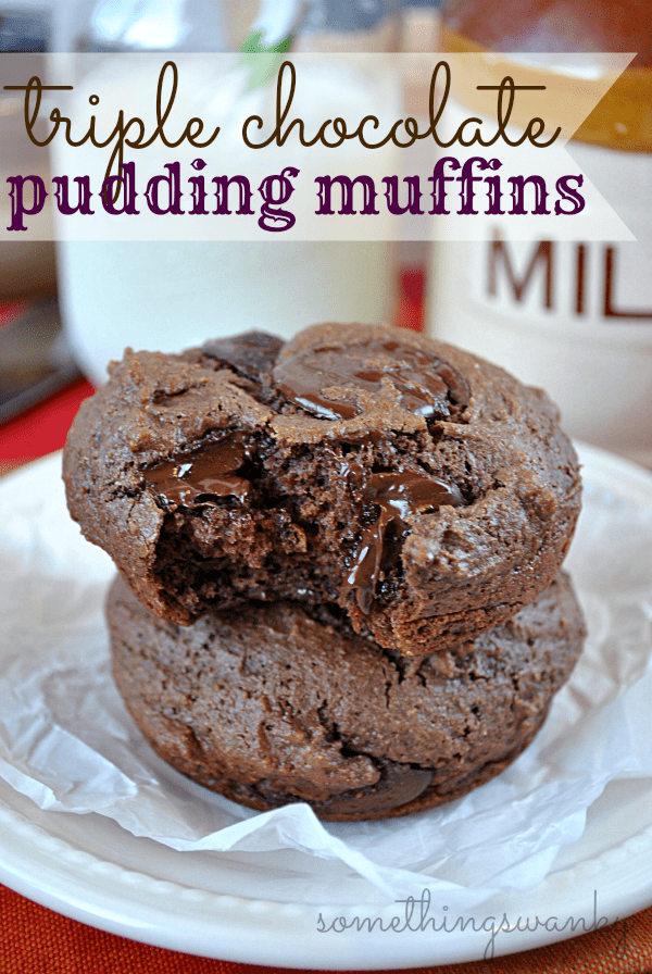Triple Chocolate Pudding Muffins | www.somethingswanky.com
