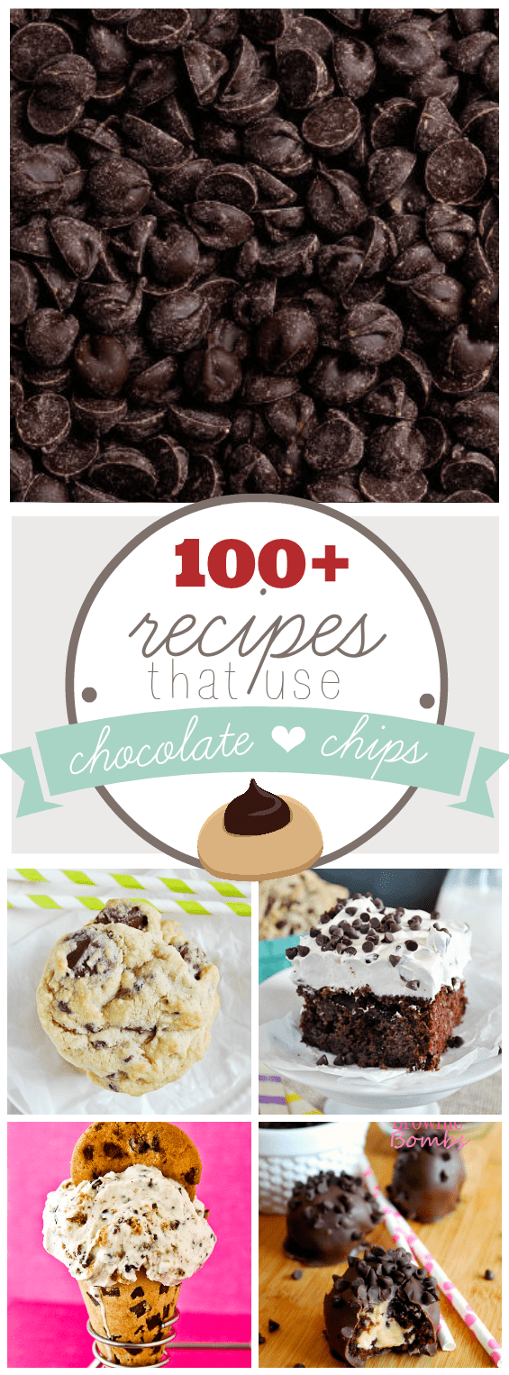 Over 100 Recipes Using Chocolate Chips! www.somethingswanky.com