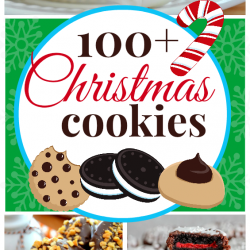 100+ Ideas for your Christmas Cookie Plate | www.somethingswanky.com