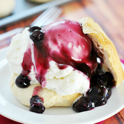 Easy Blueberry Shortcakes | www.somethingswanky.com