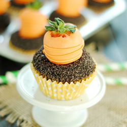 Carrots & Dirt Cupcakes | www.somethingswanky.com