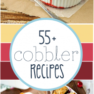 55+ Cobbler Recipes | www.somethingswanky.com