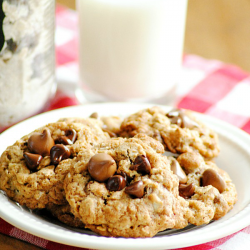 Oatmeal Chocolate Chip Cookies and a recipe for homemade cookie mix!