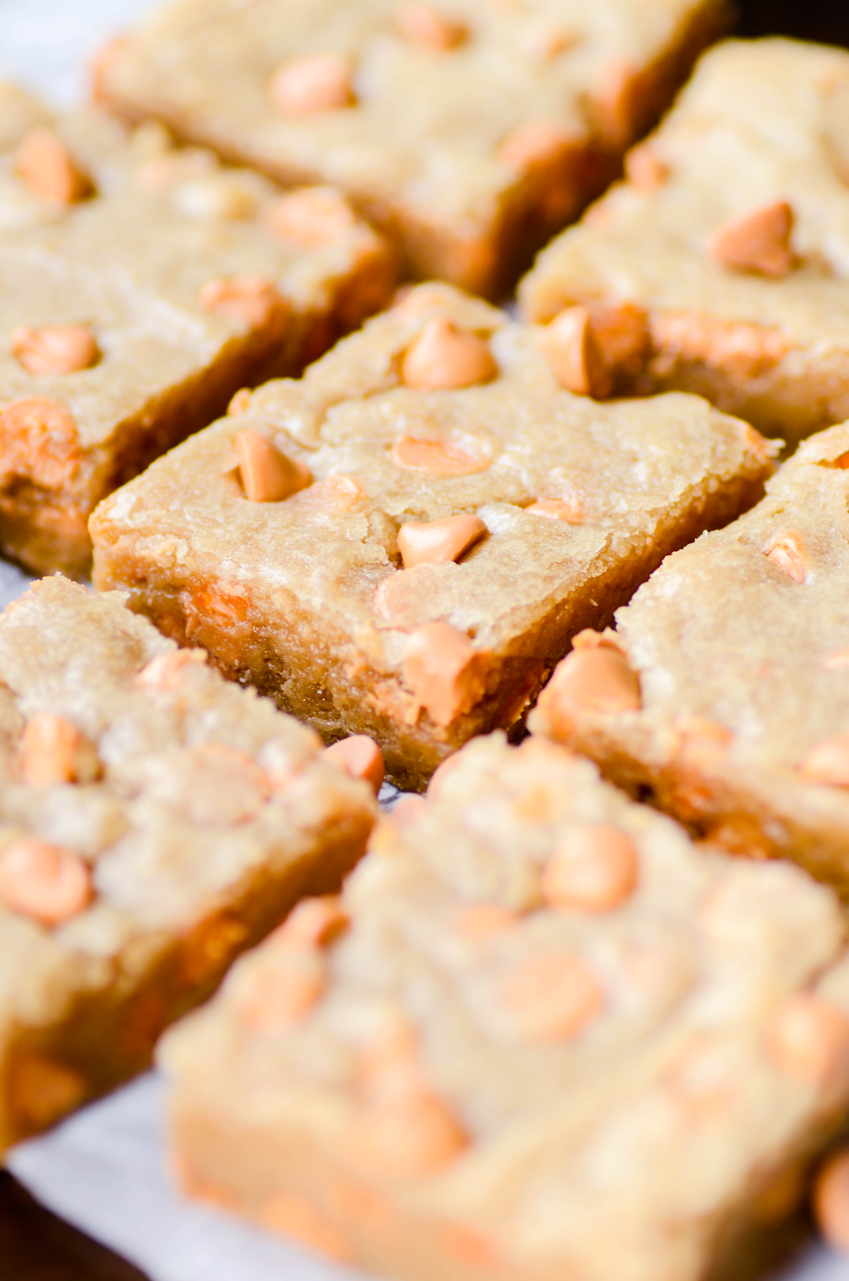 These chewy, fudgy butterscotch blondies require no mixer and very little prep work. Their crackly golden tops and gooey centers are utter perfection!