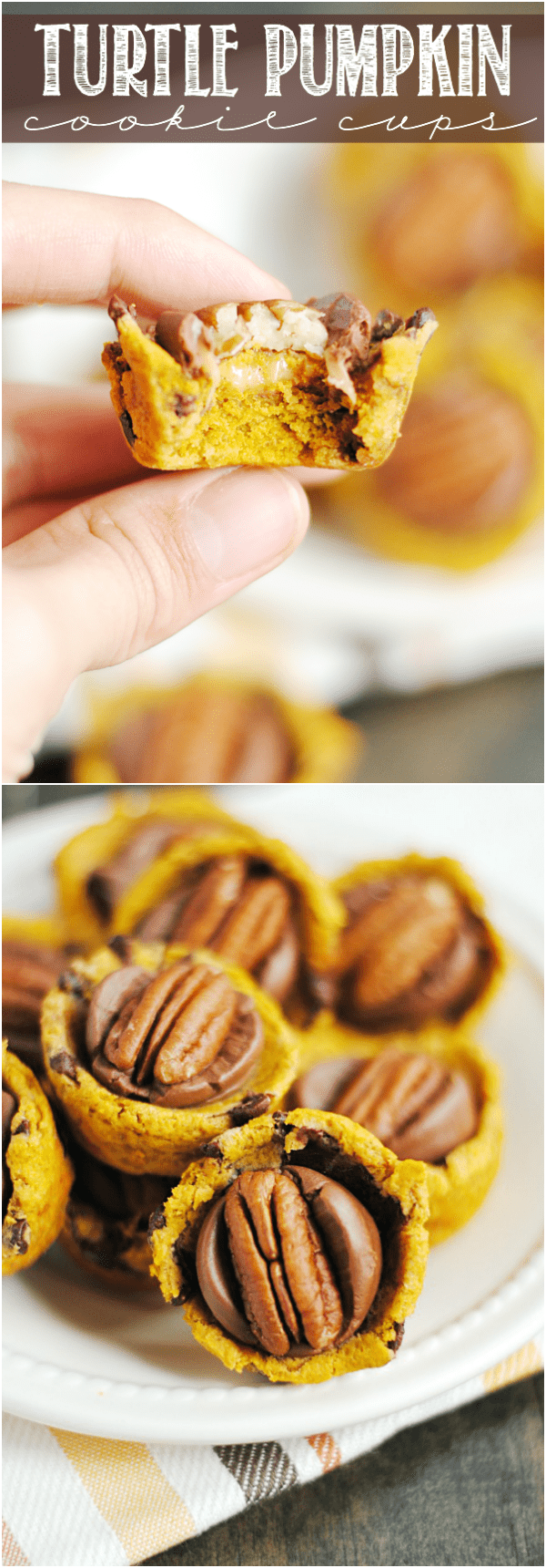 Turtle Pumpkin Cookie Cups