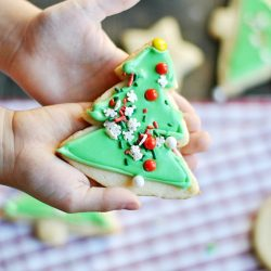 How to frost cookies like a pro using CANNED frosting... with your kids too!