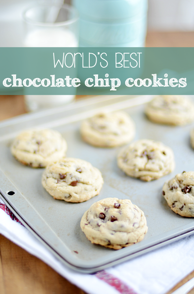 World's Best Chocolate Chip Cookies!
