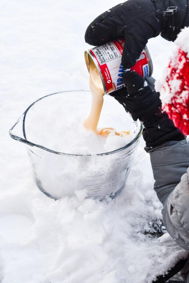 Easiest Snow Cream Recipe