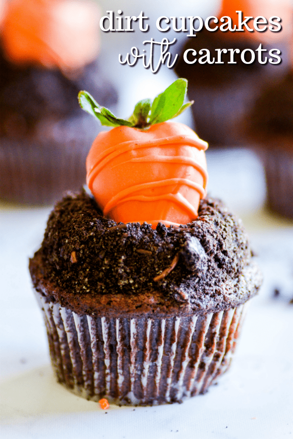 Chocolate cupcakes with whipped chocolate ganache dipped in Oreo crumbs and topped with a candy coated strawberry (that looks like a carrot!). These dirt cupcakes are perfect for springtime!