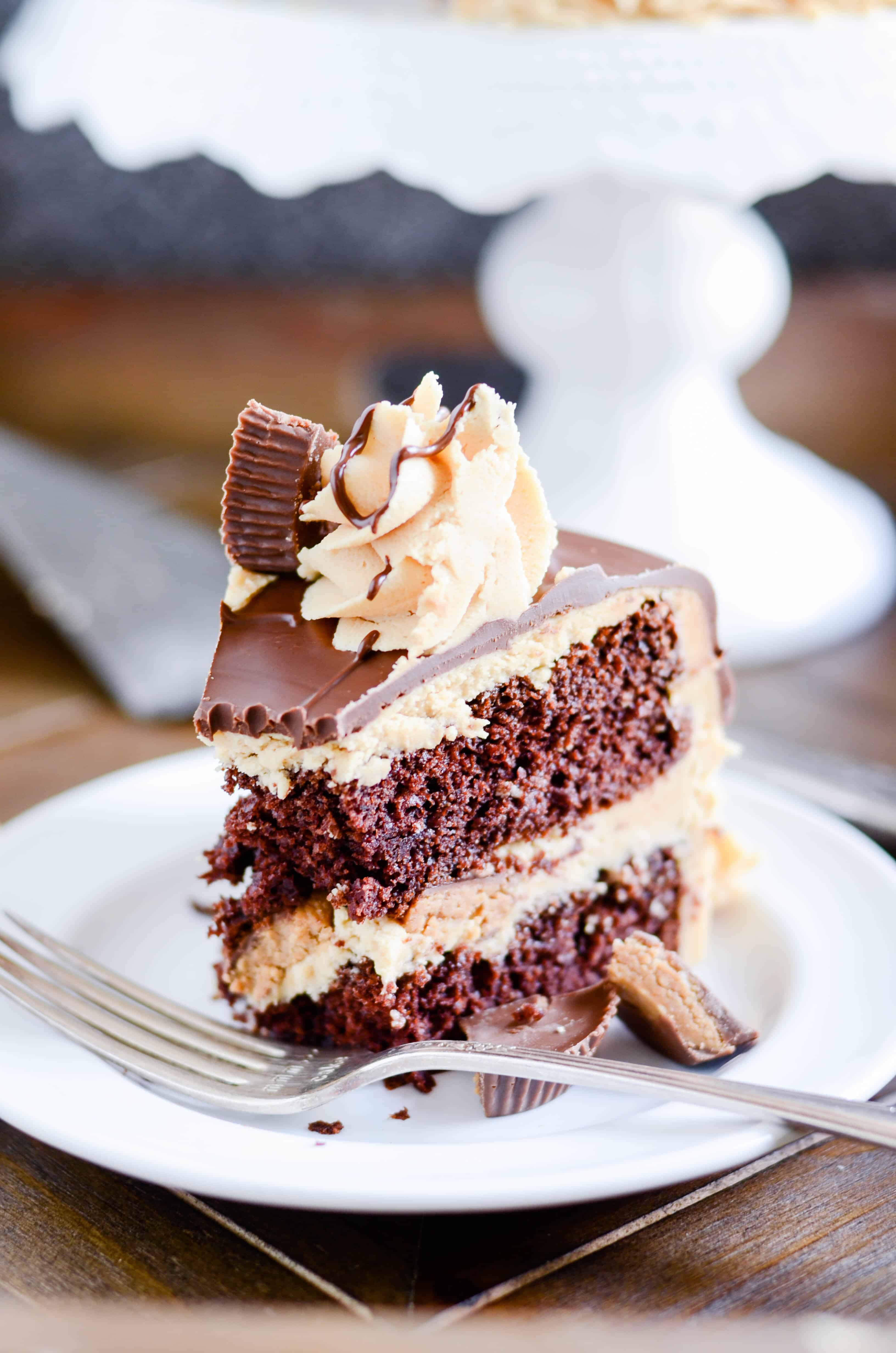 Fudgy chocolate cake layered with rich peanut butter ...