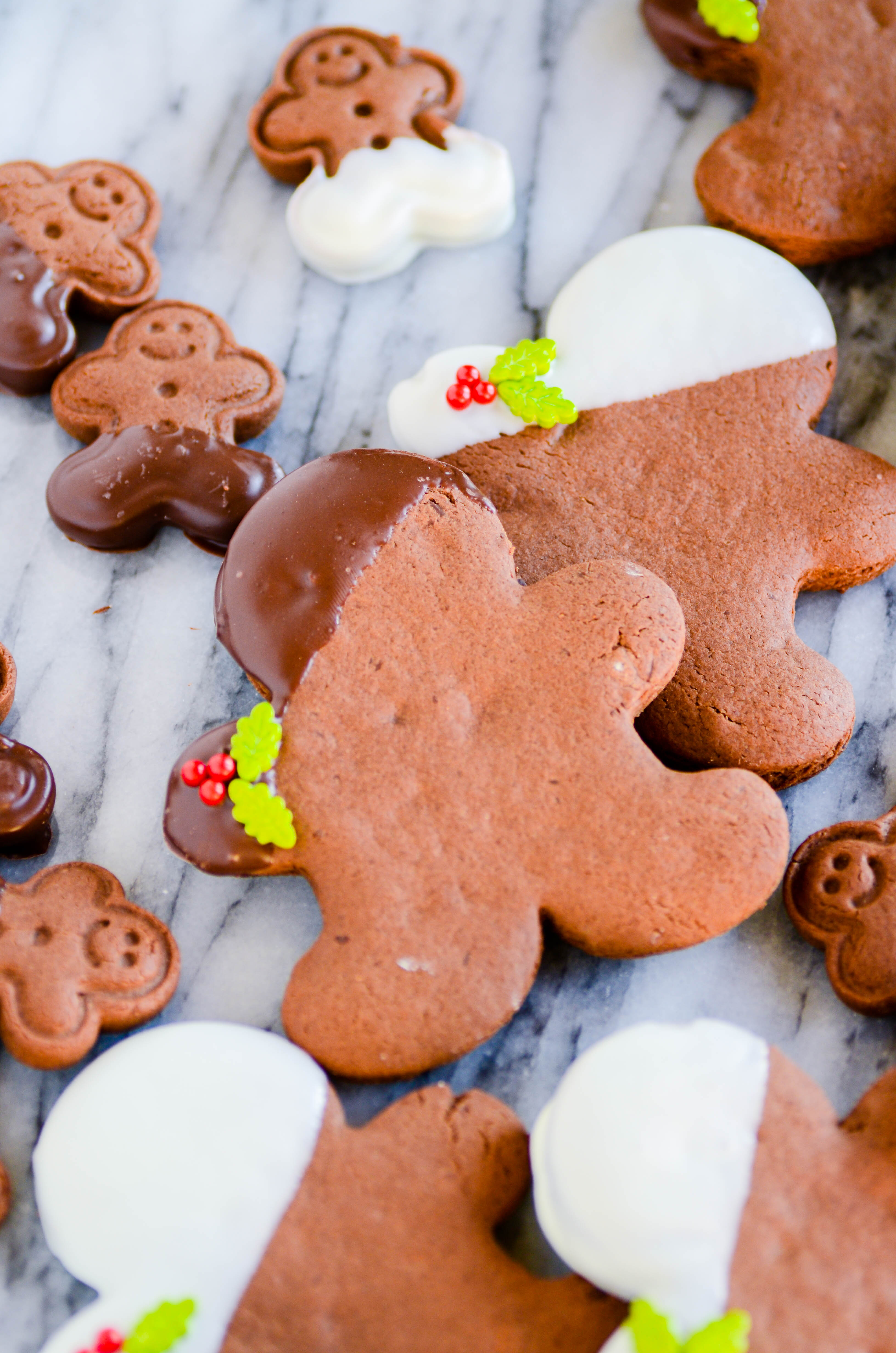 My favorite gingerbread cookie recipe made with extra chocolate!