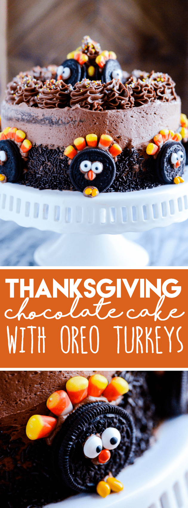 Recipe and instructions for a really cute and easy Thanksgiving cake!