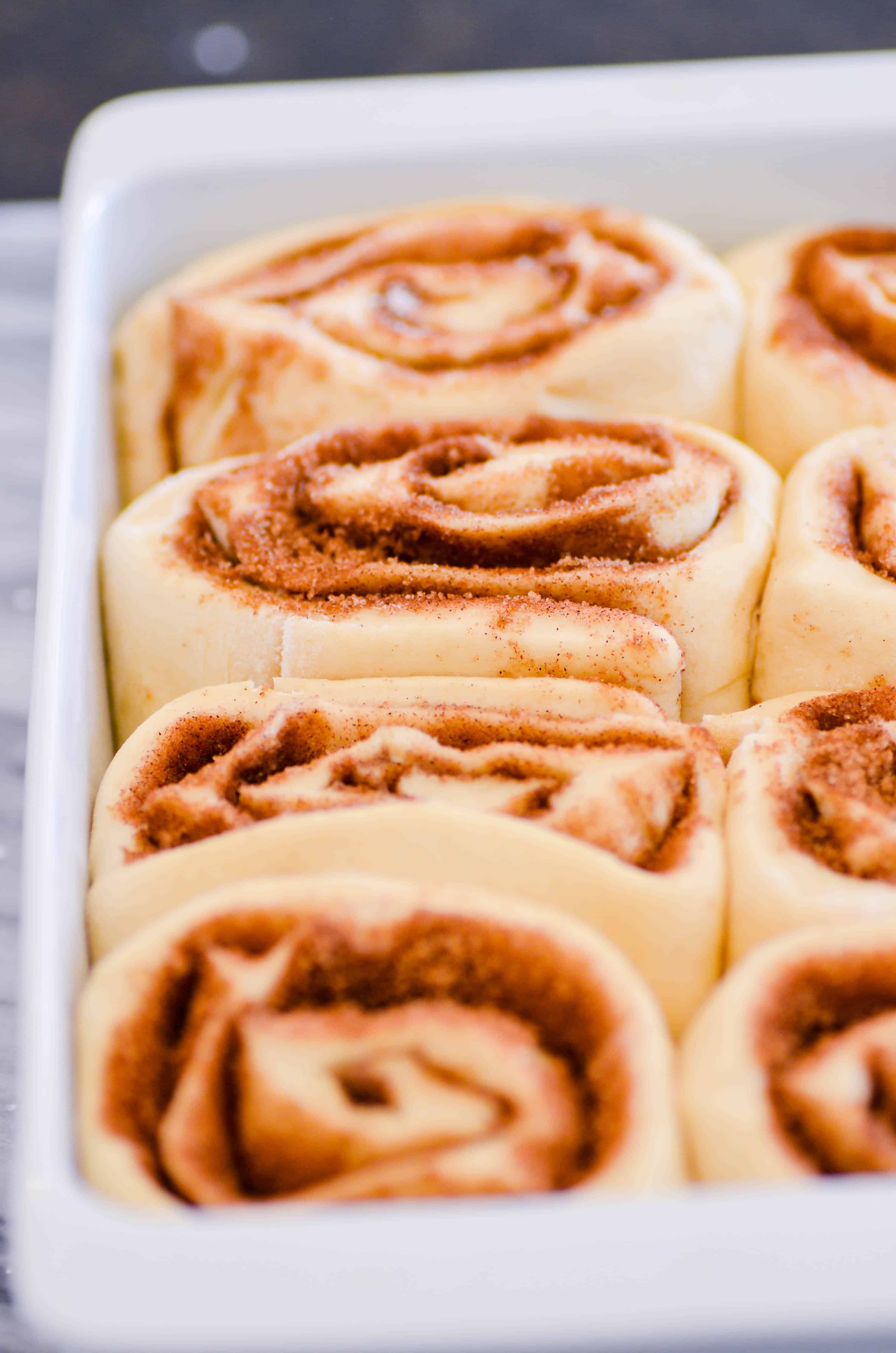 Soft and tender cinnamon rolls that melt in your mouth topped with a creamy vanilla frosting.