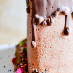 When you want the big, beautiful cake-- but you don't want all the leftovers. This Half Birthday Cake is a fun, small-batch alternative to a traditional layered birthday cake!
