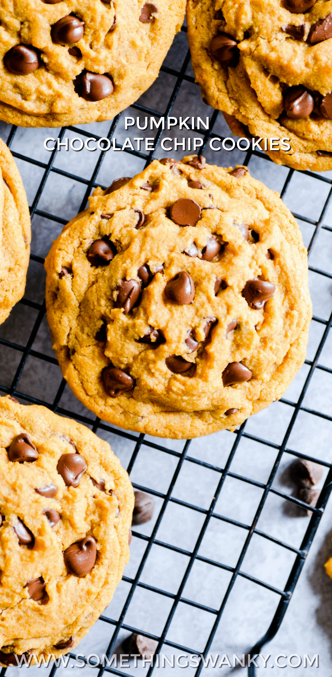 If you like a little pumpkin with your chocolate chip cookies, this is the pumpkin cookie for you! Chewy centers and crispy, golden edges with lots and lots of chocolate chips.